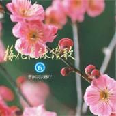梅花流CD No.6