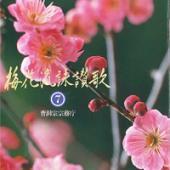 梅花流CD No.7
